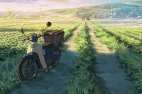 Your Name Bild #6