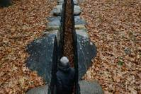 Leaning into the wind - Andy Goldsworthy (OmU) Bild #3