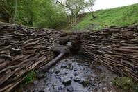 Leaning into the wind - Andy Goldsworthy (OmU) Bild #4